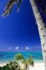 Rarotonga and the Pacific
